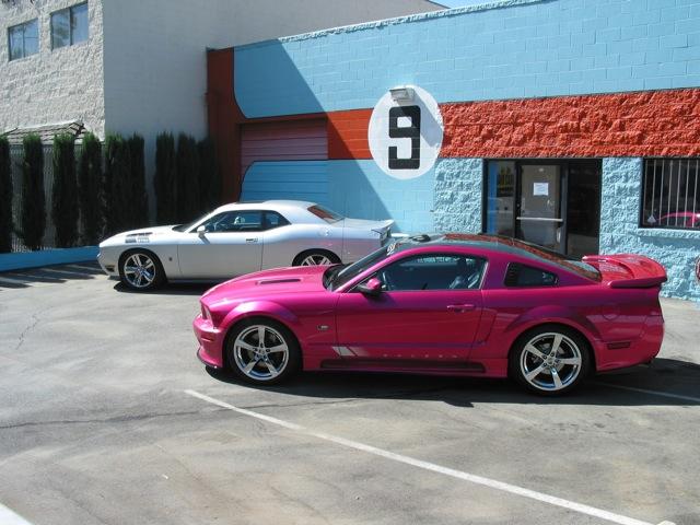 Mollypop Mustang