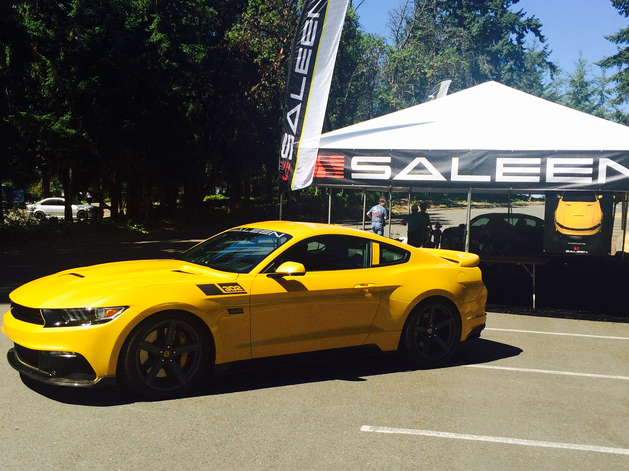 2015 302 Black Label coupe - Mustangs Northwest
