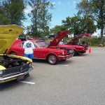 Mustangs on the Niagara