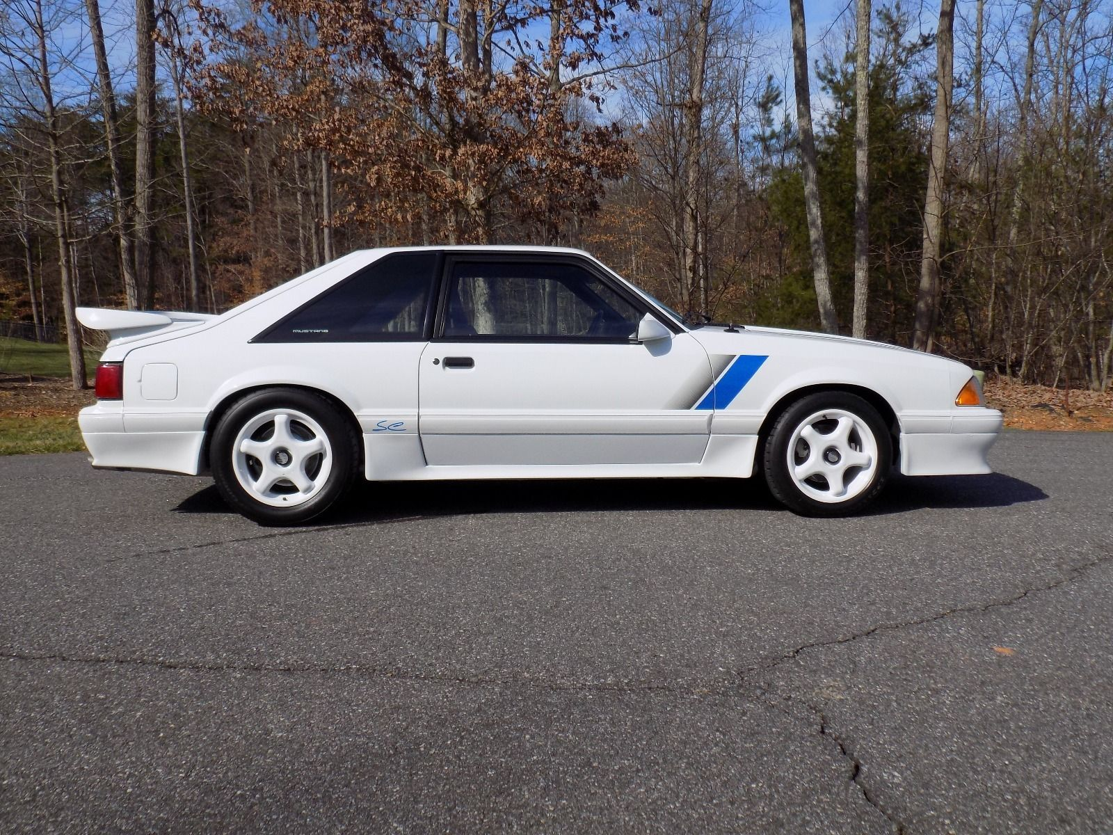 1991 Saleen Owners And Enthusiasts Club Soec