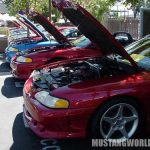 Soo many Saleen Mustangs... so little time... :-)