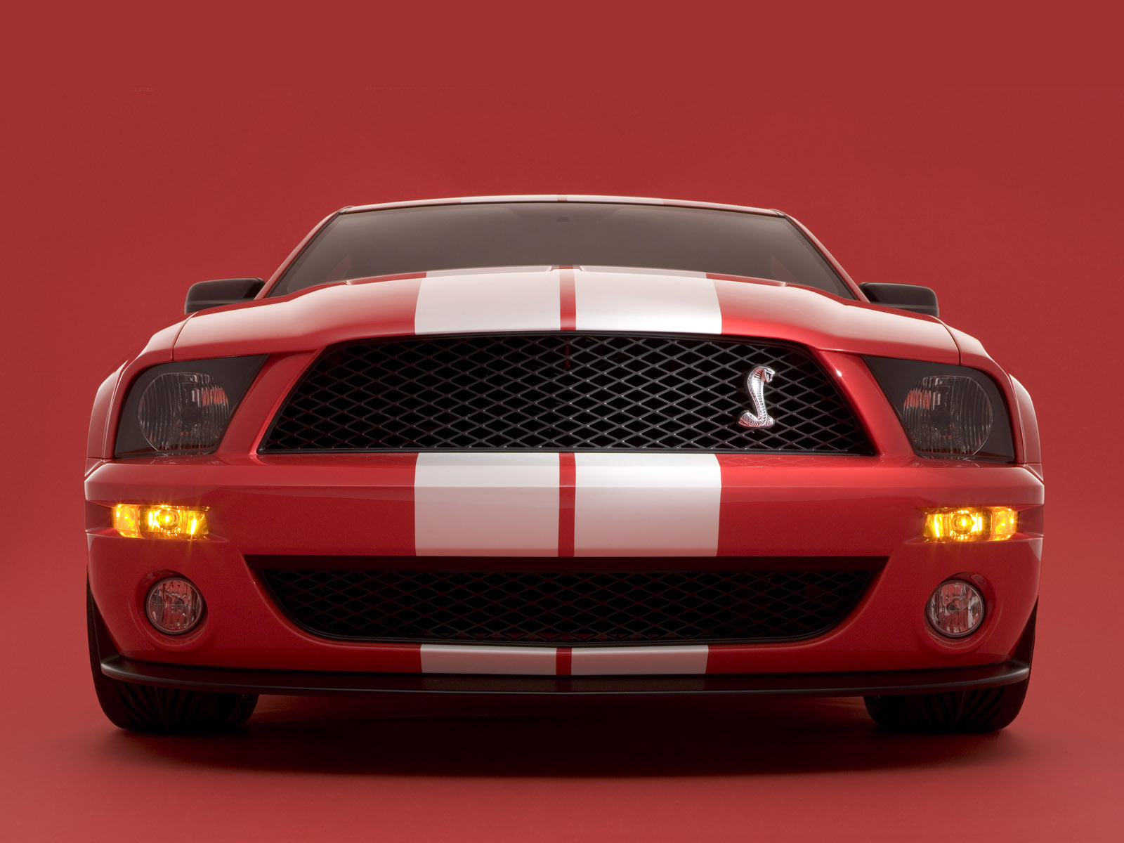 2005 SHELBY COBRA GT500 CONCEPT | Saleen Owners and ...