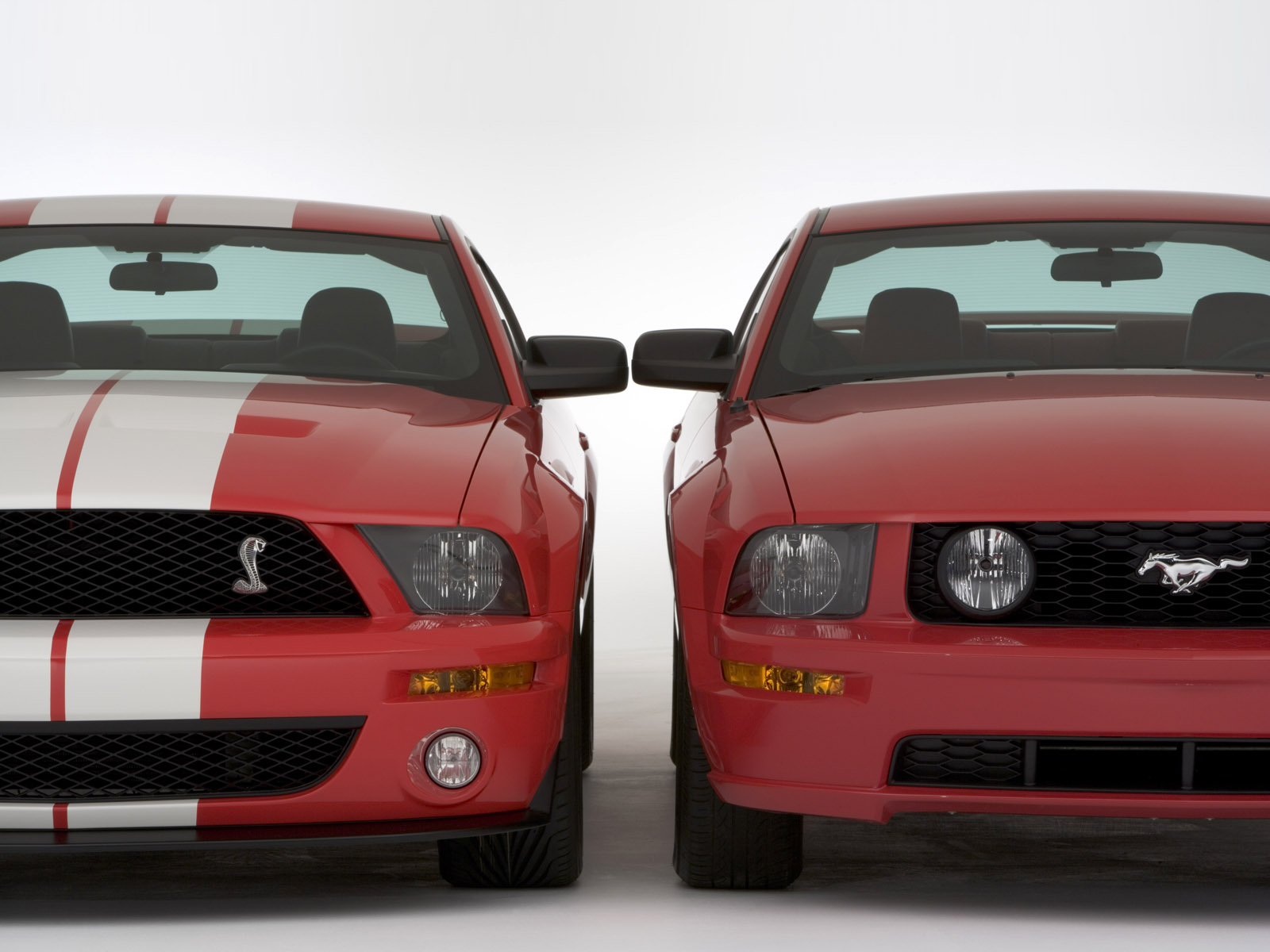 Shelby Gt Concept