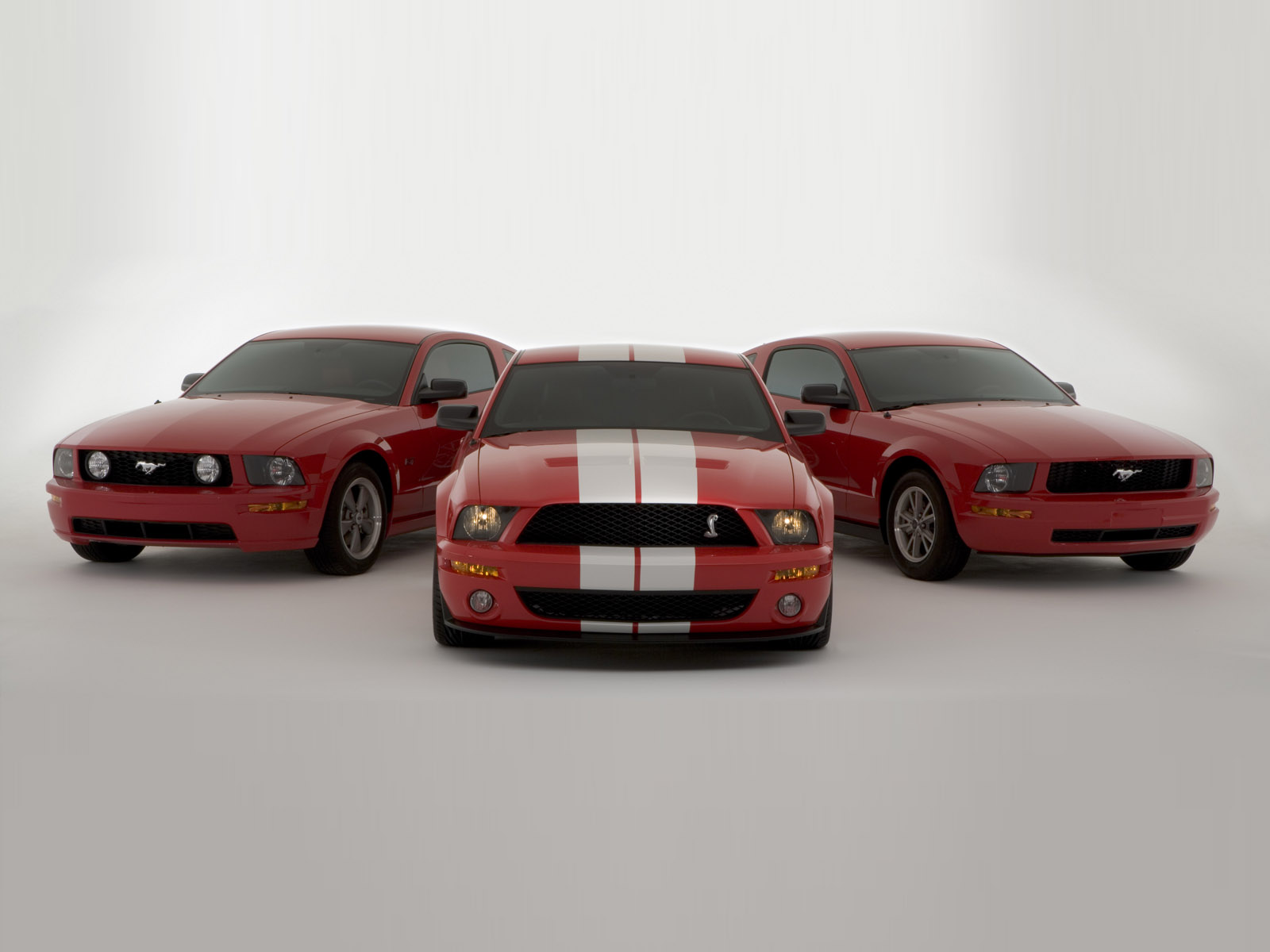 2005 shelby cobra gt500 concept saleen owners and enthusiasts club