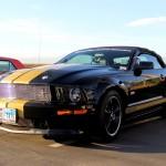 Mustangs Across America 2014