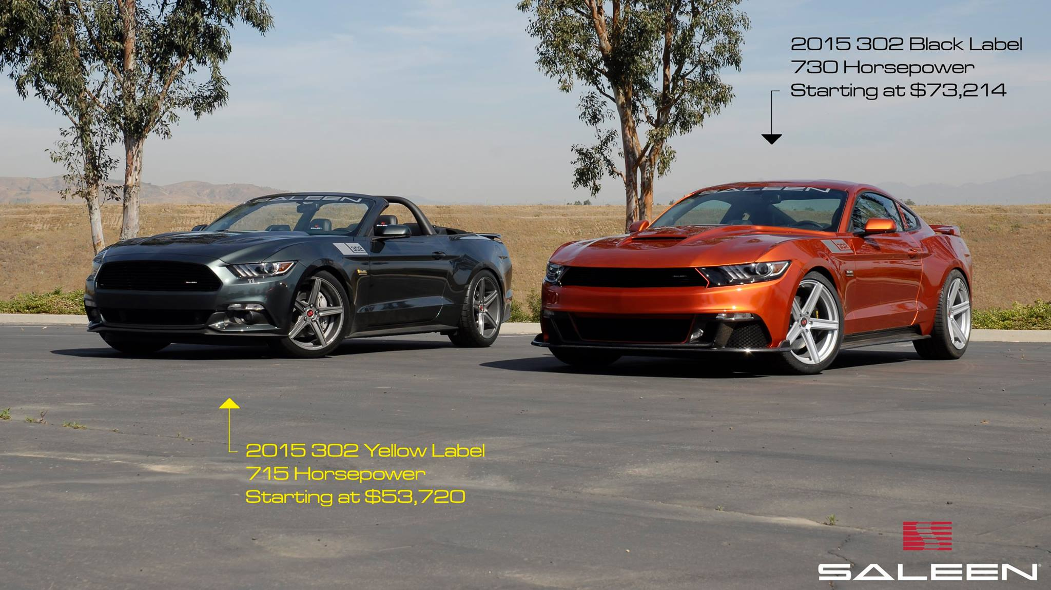 2015 saleen 302 Yellow and Black Labels