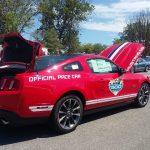 Mustangs on the Niagara