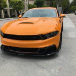 2019 Saleen S302 Black Label