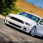 2014 S302 Mustang